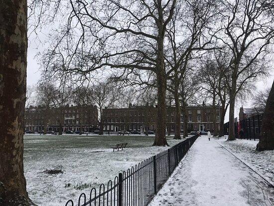 Highbury Fields