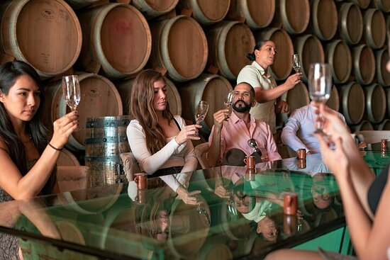 Private Tour of Magical Tequila with Tasting