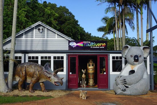 Montville, أستراليا: Cuddles Koala and Sara Triceratops welcome you to a multiverse of curiosities and collectables when you cross the threshold.....