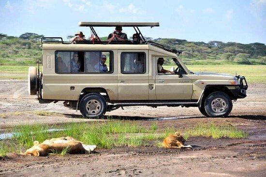 Tanzania Join Safaris