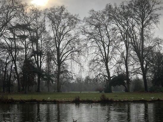 Lac Daumesnil, Bois de Vincennes 20.1.1