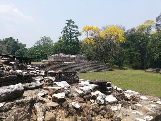 Quirigua Photo