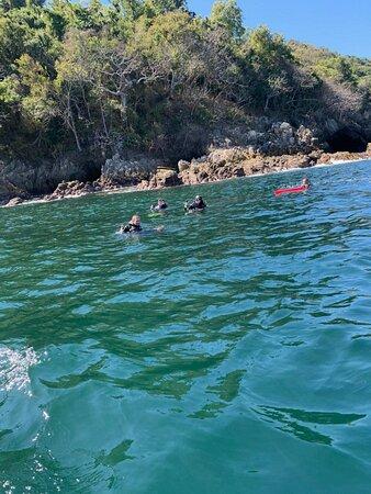Scuba Diving Tour - Majahuitas Photo