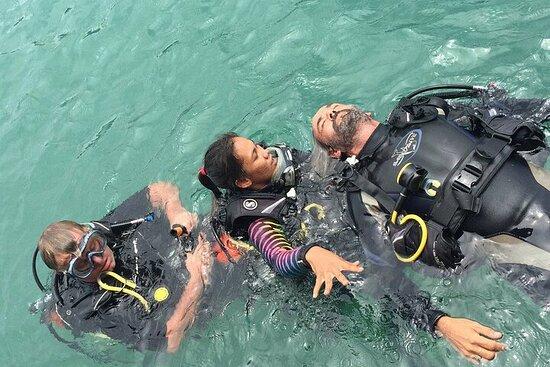 Rescue Diver y EFR (comienza desde Ko Kut)