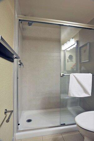 King Guest Room Walk-in Shower