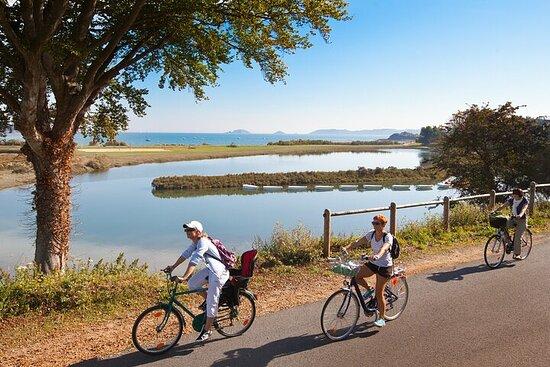 Gourmet bike ride in Lanvallay