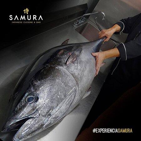 SAMURA JAPANESE CUISINE & BAR CANCUN