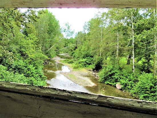 A partir du pont Pierre-Carrier, vue sur la rivière Blanche