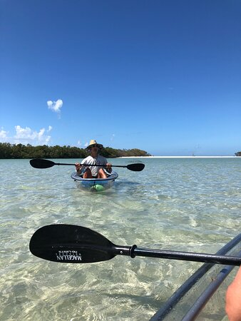 Clear Kayak Tour of Shell Key Preserve and Tampa Bay Area: Chris, our marvelous tour guide!