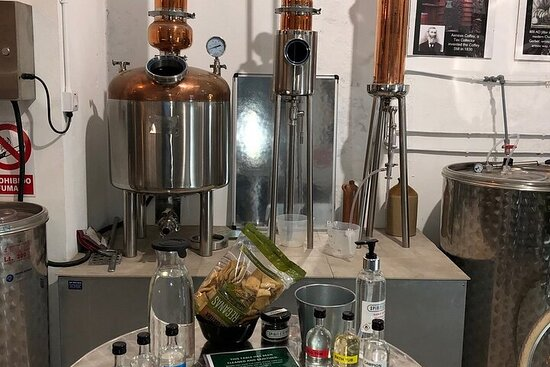 Gibraltar Walking Tour with Gin Tasting Experience
