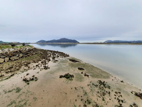Parque Natural Marismas de Santona