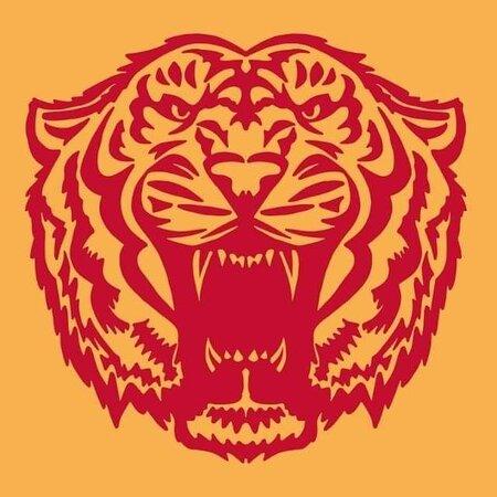 Arcade Tigers