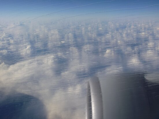 ANA (All Nippon Airways): 凍結したままの窓