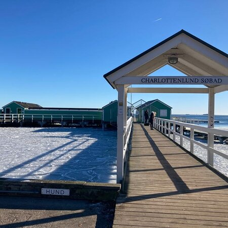 Copenhague, Danemark : Il grande gelo a copenaghen