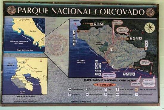 Puerto Jimenez-bild