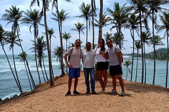 Tour privato di 7 giorni in Sri Lanka con una guida qualificata