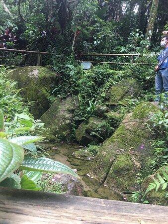 Salesopolis, SP: Nascente do Rio Tietê, há uma explicação no local feito por um funcionário