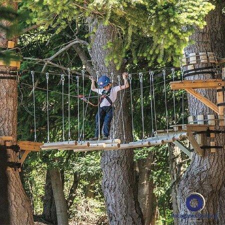 Te imaginas un parque de diversiones en el bosque? contactanos por whatsapp y hacé la reserva