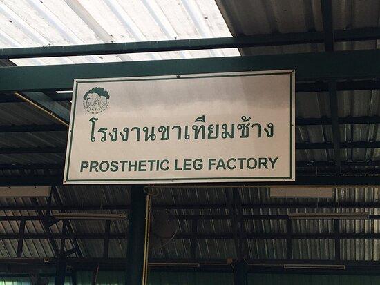 Prosthetic Legs for Elephants