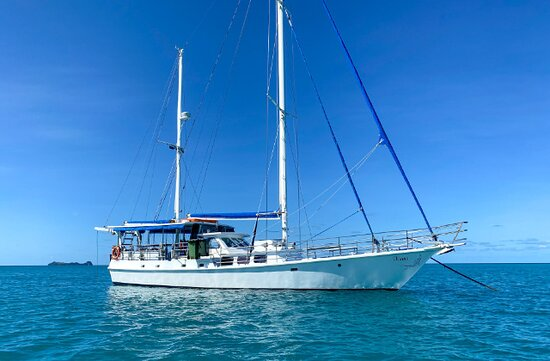 3 Day Whitsundays Sailing and Diving Adventure: Kiana: Picture of Kiana taken from the water