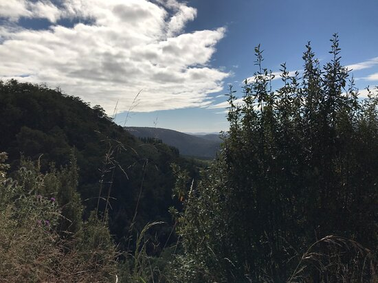 Mersey Valley Drivers Road Lookout