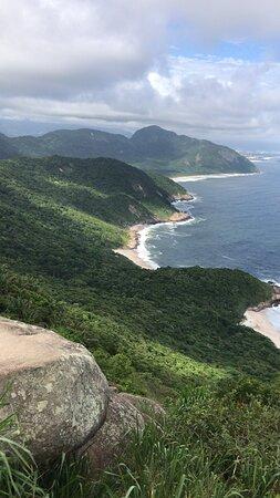 Floresta da Tijuca R.J.  Visite , Ame e Proteja