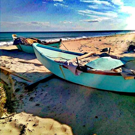 Rafraf, Tunisia: La pêche