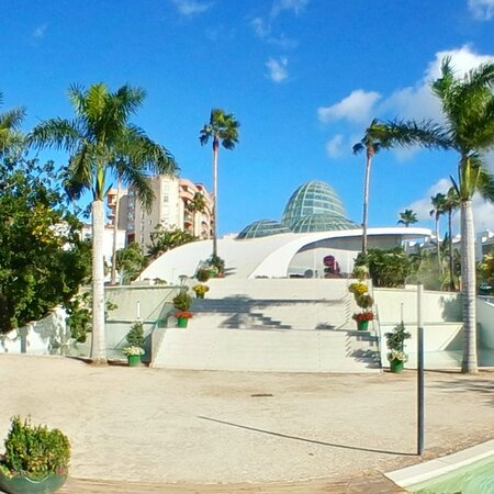 Orchid House in beautiful #Estepona