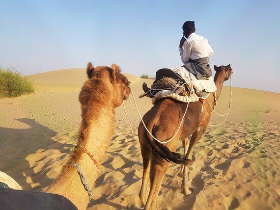 Bollywood Camel Safari