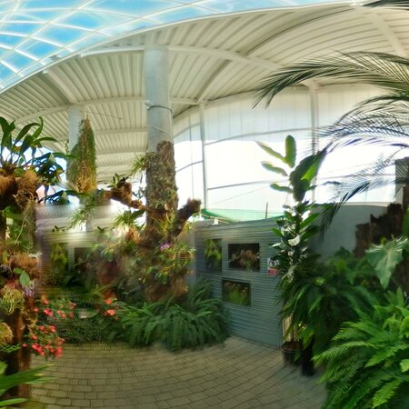 Great Orchid House