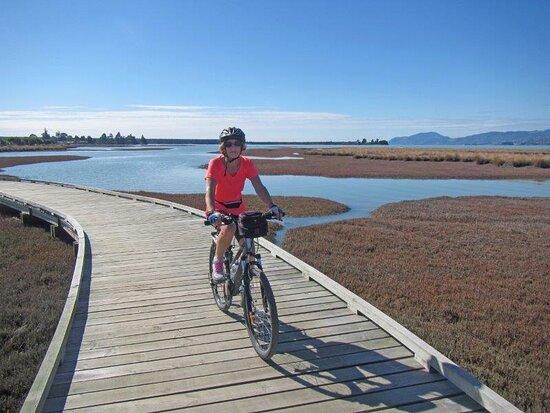 Nelson, New Zealand: Riding the Great Taste Trail through the Waimea Wetlands