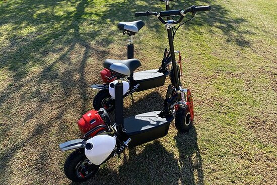 Half-Day Private Gas-Powered Scooter Tour in Los Angeles