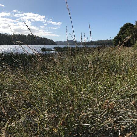 Four Springs Lake
