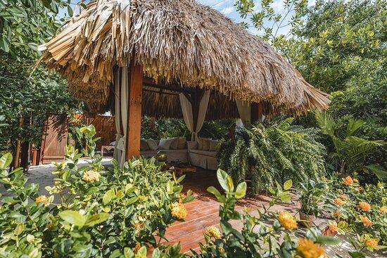 In-room dining - Picture of Aruba Ocean Villas - Tripadvisor