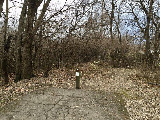 Scioto Greenway Trail