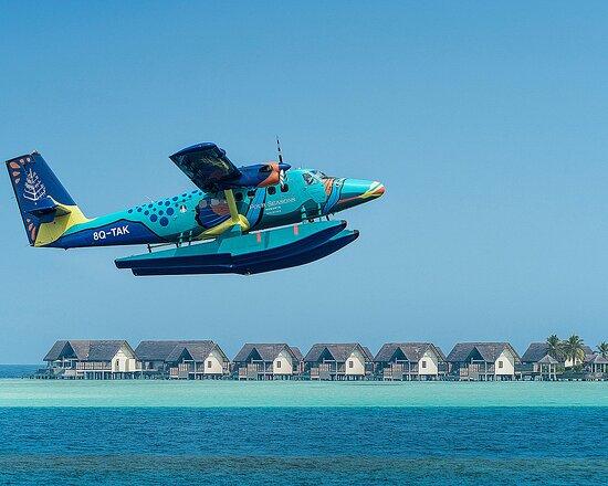 Four Seasons Flying Triggerfish Seaplane