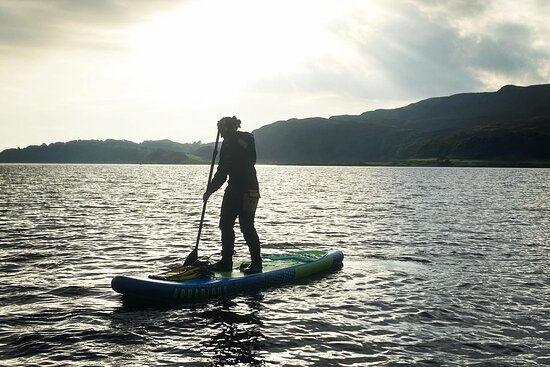 PDC Paddle Board
