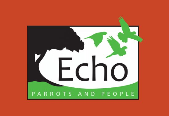 Echo Parrots and People