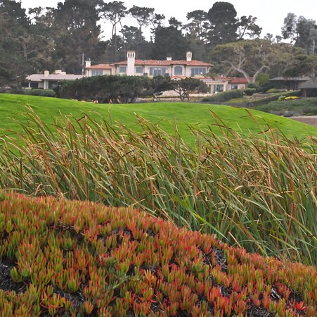 Lovely home and scene along the Monterey Bay Drive...gorgeous. Iceplant and grasses waving in the wind.
