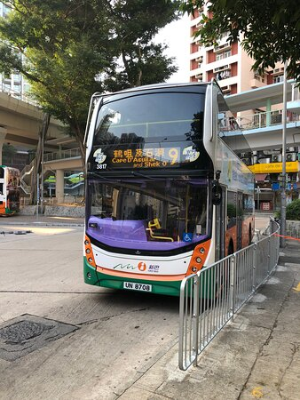 Cape D'aguilar Marine Reserve - take bus 9 from just outside the Sheu Kei Wan MTR Station