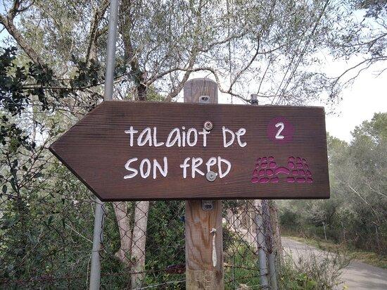 """Talaiot De """"son Fret"""" Sencelles Mallorca"""