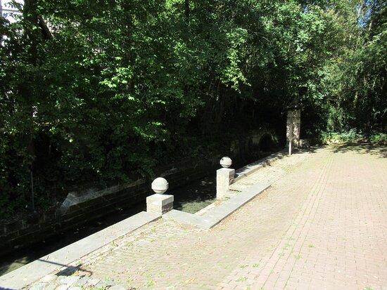 Sint-Brigidabron