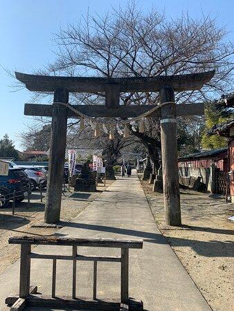神社入り口。左が駐車場、20~30台くらい駐車可能?正面の小高くなっている(高さ20mくらい)ところが本殿。