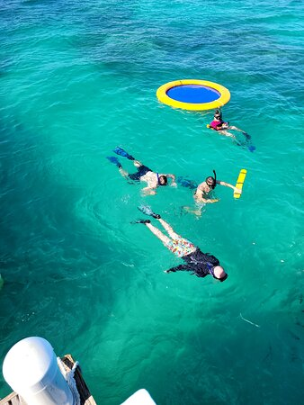 Reef Explorer Multiple activity Excursion from Punta Cana by Marinarium: snorkeling around the reef