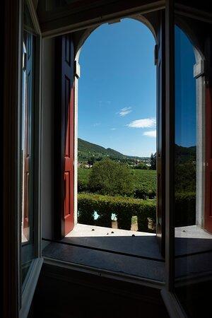 Prosecco Hills View