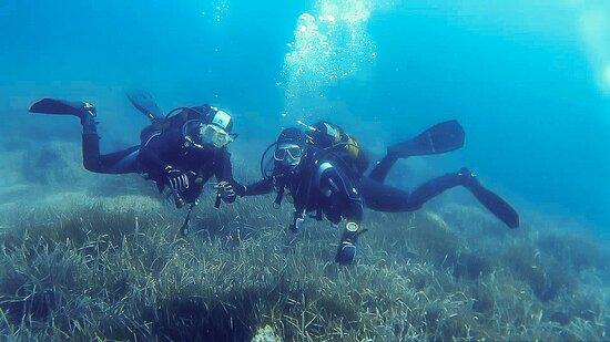 Rivemar Azohia Diving Center