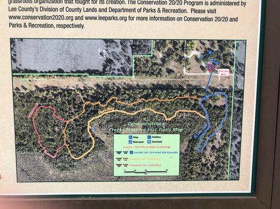 Caloosahatchee Creeks Preserve East