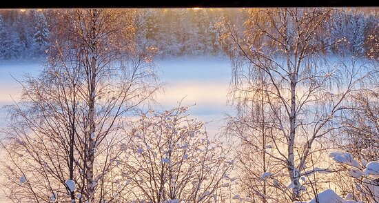 Nebelbogen über Pieni Tallusjärvi