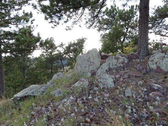 Rankin Ridge trail