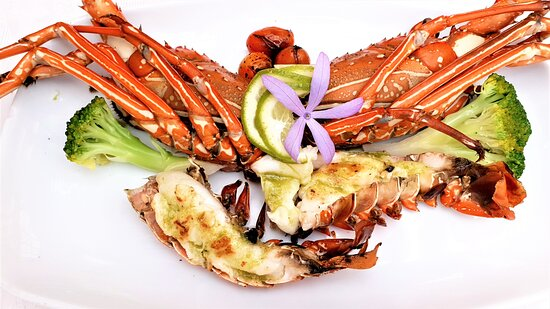 Lobster, to taste!!!